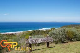 Moquini prime plot views